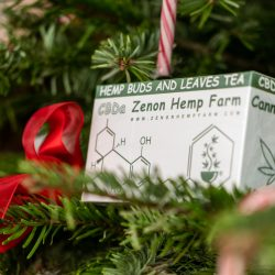 Holidays at Zenon Hemp Farm